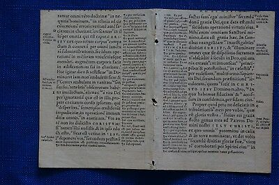 Latin bible manuscript page 1543, ancient scripture curiosity wunderkammer