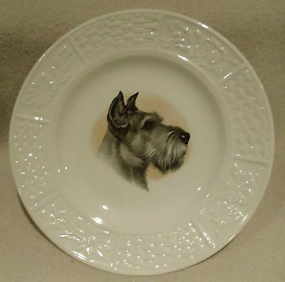 Weatherby Hanley England Royal Falcon Ware Fine China Plate Schnauzer Dog  8""