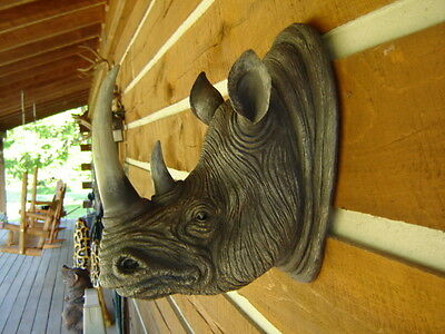 Rhinoceros Rhino Wall Mount Head Taxidermy Safari Jungle