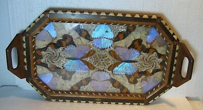 Vintage Brazil Wood Inlay Glass Butterfly Wing Tray