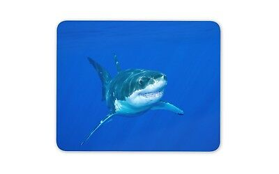 Great White Shark Mouse Mat Pad - Sharks Diving Diver Fun Gift PC Computer #8577