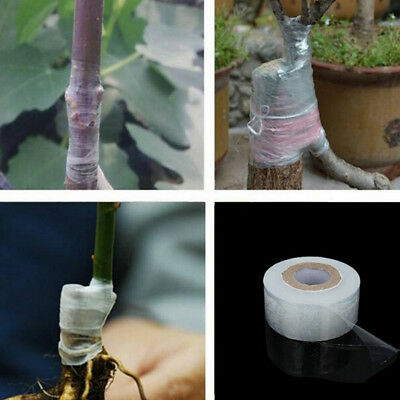 3cm*120m Self-adhesive Fruit Tree Grafting Stretchable Tapes Garden Plant Too RT