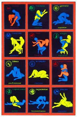 Zodiac Positions Sexual Astrology Lovers Months Chart Blacklight Poster - 24x36