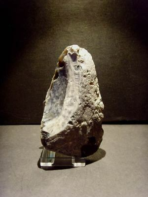 Paleolithic - Superb Mousterian atypical axe/scraper c. 60,000BP