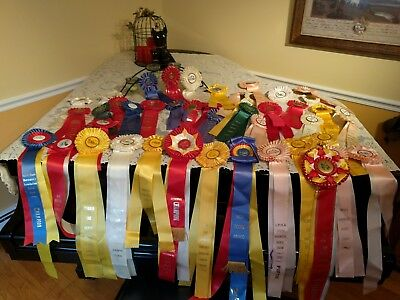 Huge Lot 45 Horse Show Ribbons Equestrian Awards Champion First Through Sixth