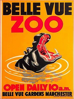 Belle Vue Zoo Hippo Manchester England Great Britain Vintage Travel Poster Print