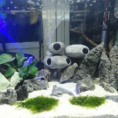 Cichlid Stone Rock Aquarium Fish Tank Pond Ornament Decoration Shrimp Breeding