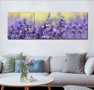 "16X16"" 3 Panels Canvas Print Art Oil Painting Lavender & Bee Wall Decor No Frame"