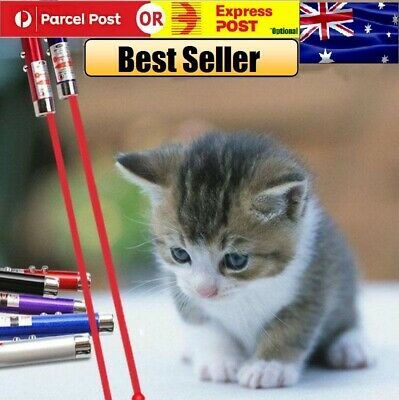 🐱Laser Light Pointer 2in1 Pet Dog Cat Fun Training Torch LED Toys small mini🐶