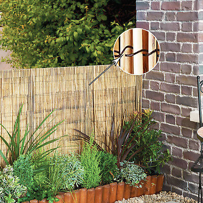 1Mx4M NATURAL BAMBOO FENCE PEELED REED FENCING PANEL PRIVACY SCREEN ROLL GARDEN