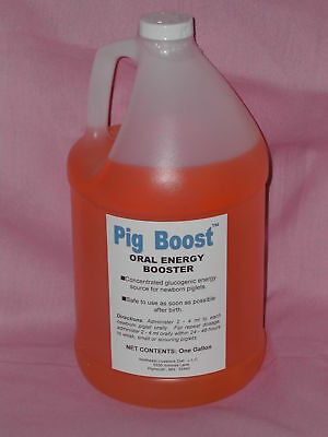 Pig Boost Oral Energy Booster Gallon Newborn Piglets Weak Small Scour Swine SALE
