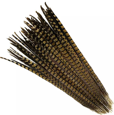 5pcs Natural Pheasant Tail Feathers 35-40cm DIY Art Craft Millinery Vase Decor