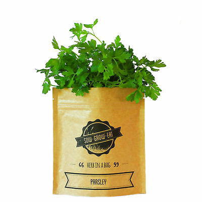 NEW Parsley herb in a bag by Sow Grow Eat