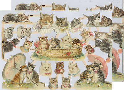 Chromo EF Découpis Chat 7415 Embossed Illustrations Cat