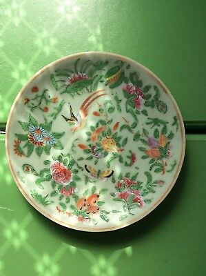 19th Century Chinese Famille Rose Celadon Marked Canton Ware Plate