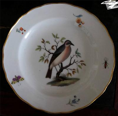 Antique Meissen Hausmaller Bird Plate Late 18th Century Circa 1780