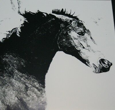 Horse Art Black and White Photograph Abstract effect