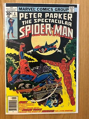 Marvel Comics: Peter Parker, The Spectacular Spiderman #6 – VF May 1977