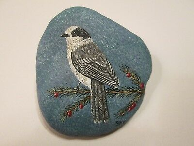 Gray Jay Bird hand painted on a rock by Ann Kelly