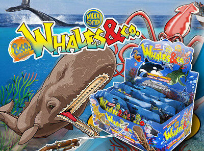 DeAgostini Whales & Co.Maxxi Edition 1 Display 16 Booster Wale & CO Neu und OVP