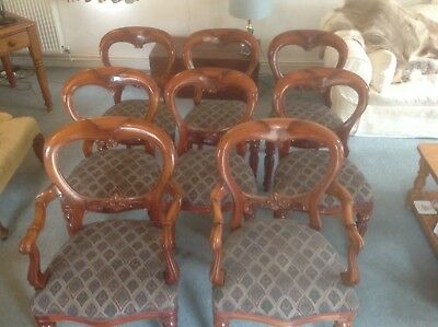 8 VICTORIAN STYLE MAHOGANY BALLOON BACK  SHAPE CHAIRS  very good condition.