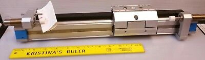 New Festo Dgpl-25-250-Ppv-A-Kf-B 24955326 Linear Actuator Pneumatic Drive Rail