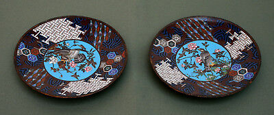 Pair Antique Japanese Cloisonne Chargers Meiji Gold Wire