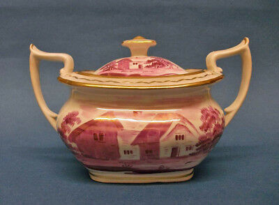 A Staffordshire London Shape Lustre Decorated Suger Box and Cover. c.1820