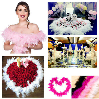 Feather Boa Strip Fluffy Costume Hen Night Dressup Wedding Fancy 2M Length