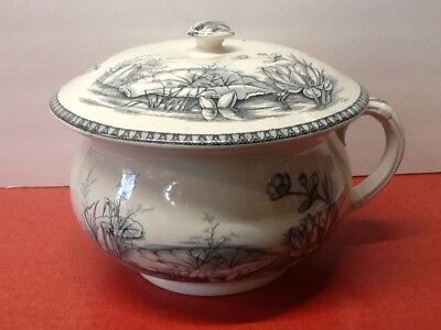 Vintage T&R Boote England ironstone chamber pot swallow pattern