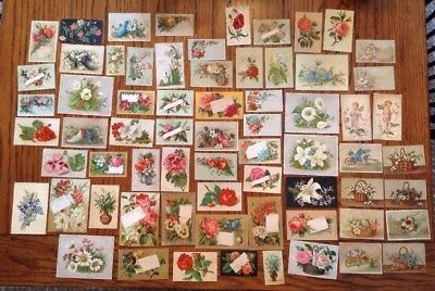 LOT Of 60+ Antique Vintage Victorian Floral TRADE CARDS Flower Theme