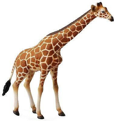 Collecta Animali Reticulated Giraffe Giraffa 88534 Wild Life