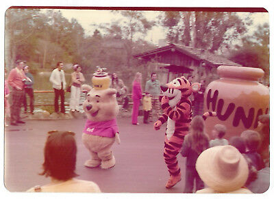 VINTAGE 70s PHOTO Winnie The Pool & Tigger At Disney World, Florida