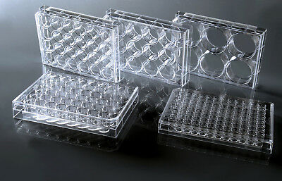 6 Well cell culture plate, Flat, Tissue culture treated, sterile