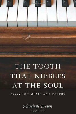 The Tooth That Nibbles at the Soul: Essays on Music and Poetry (Literary Conjug