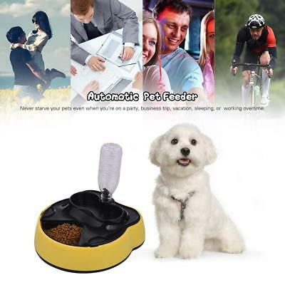 Automatic Pet Feeder Timing Dog Cat Food Dispenser 4 Meals Water Bowl Tray O6B0