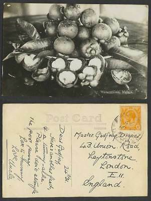 Singapore SS KG5 4c 1931 Old Real Photo Postcard Mangosteens Malaya Malay Fruits