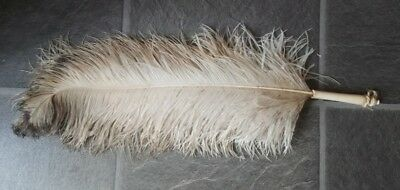 Victorian Ostrich Feather & Cattle Bone Fly Whisk rare item circa 1900