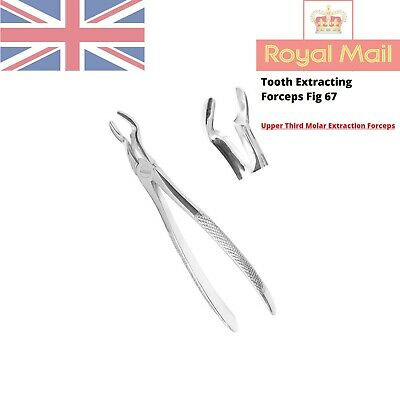 Tooth Extracting Forceps Dental Upper Third Molar / Wisdom Extraction Fig 67