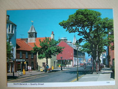 Postcard. NORTH BERWICK - QUALITY STREET. Unused.