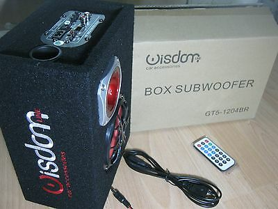 Cassa amplificata USB SD 100 WATT