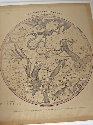 Antique1856 Burritt Huntington Map of Constellations for each Month of the Year