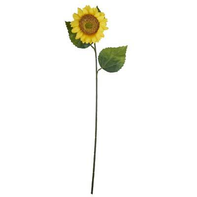NEW Sunflower Stem By Spotlight
