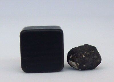 Holbrook Crusted Meteorite,Chondrite L/LL6, Observed fall, July 19,1912. 0,52 g