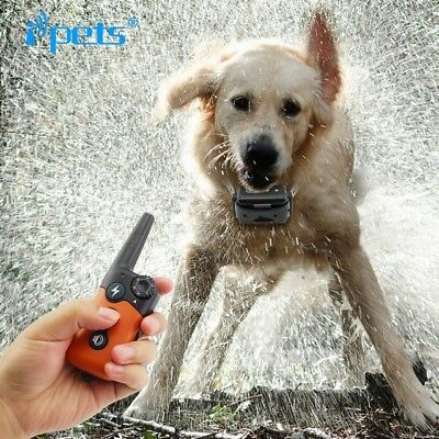 Ipets Waterproof & Rechargeable Remote Dog Shock Collar (For Dogs 10-100 lbs)