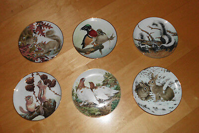 Wandteller Tiermotiv - Porcelain Plate Collection - The Forest Year - auswählen