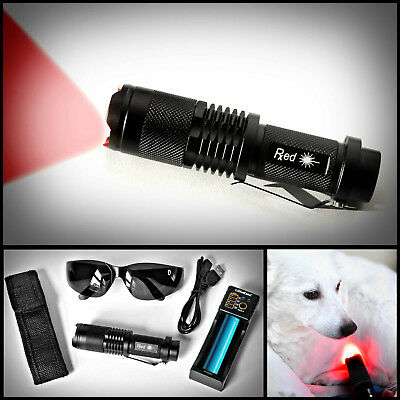 Red LED Light Therapy Kit for Pets- Naturally Treat Joint Pain, Promote Healing