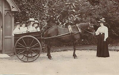 Vintage Photo Print of 1905 Pretty Edwardian Girls Horse & and Buggy Wagon Woman