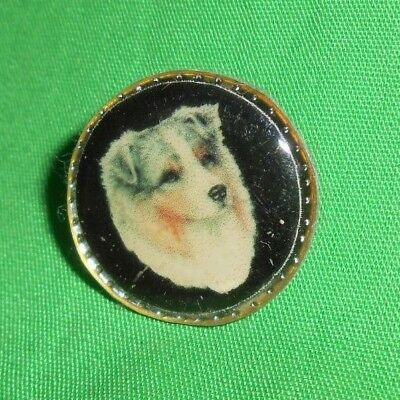 Australian Shepherd Dog Pin