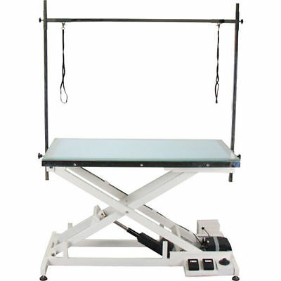New Veterinary Operating Grooming Table FT-829 with LED Illumination Top